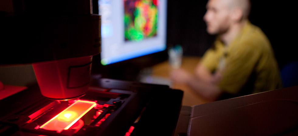 Decorative image: researcher conducting microscopy through a computer.