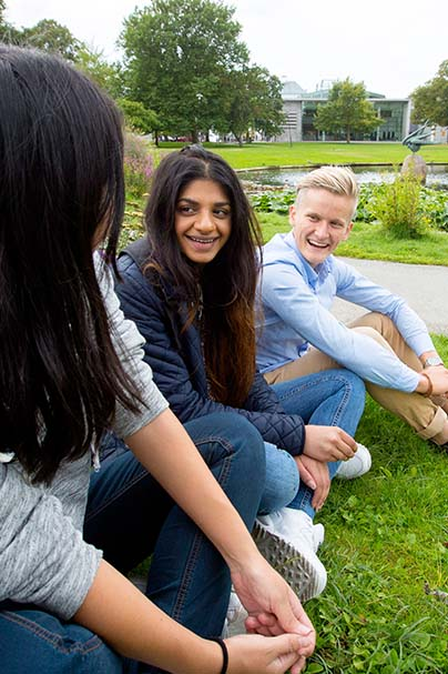 Three students sitting outdoor in partk and talking
