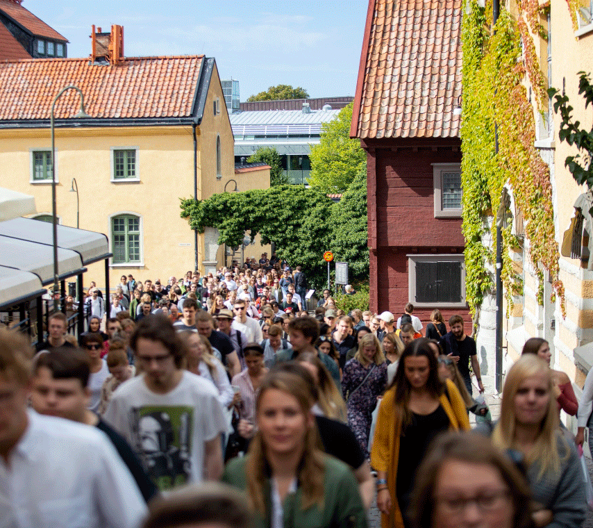 A crowd of people walking outside Campus Gotland
